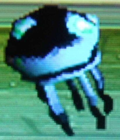 File:Black Jellyfish.jpg