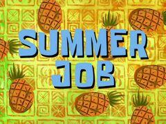 Summer Job
