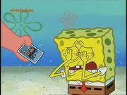 Cryingthecard