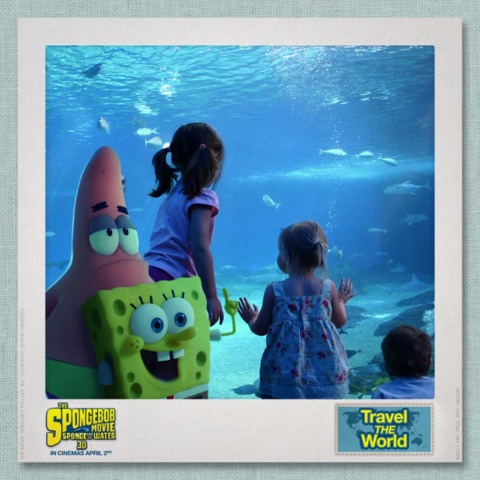 File:SpongeBob & Patrick Travel the World - Australia 2.png