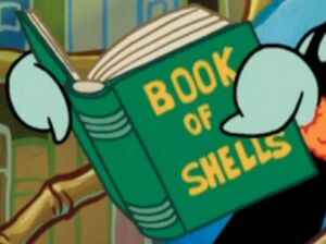 Book - Book of Shells