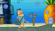 Snail Mail 023