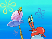 Mr. Krabs in Hide and Then What Happens?-14