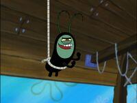 Aplankton