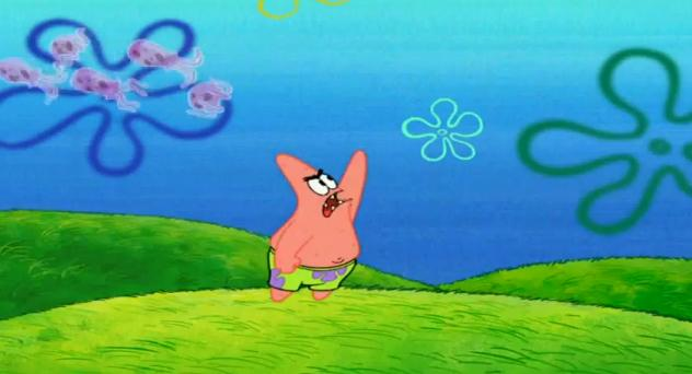 File:Not pointing at the jellyfishes.jpg