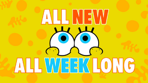 All New All Week Long