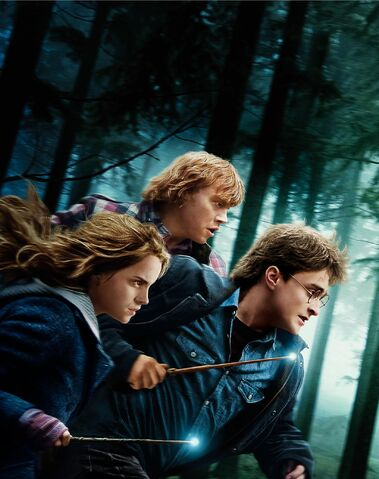 File:Harry-Potter-and-the-Deathly-Hallows-Part-I-36ebb680.jpg