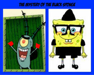 The Mystery of the Black Sponge