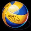 Asset Volleyballs