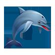 Asset Dolphin