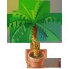 Asset Palm Trees