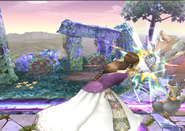 Zelda SS