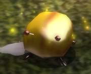 Iridescent Glint Beetle