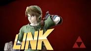 Link-Victory2-SSB4