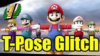 T-Pose Screen Result Glitch in Super Smash Bros Wii U (AKA T-Stance)