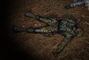 Lingov dead