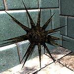 STALKER Artifact Guide Latest?cb=20100628122426