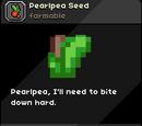 Pearlpea Seed