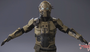 Privateer torso