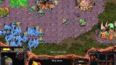Starcraft Original Zerg - Campaign Mission 1 Among the Ruins Walkthough Lets Play