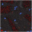 File:BurnishedPlains SC-Ins Map1.png