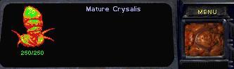 File:MatureChrysalis SC1 Wireframe.jpg