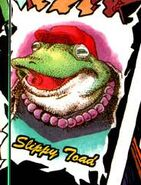 Itoh Slippy
