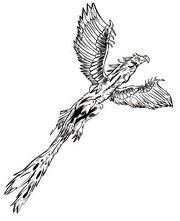 Andorian atlirith eagle
