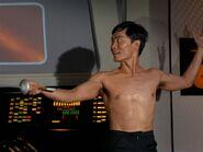 Sulu fencing
