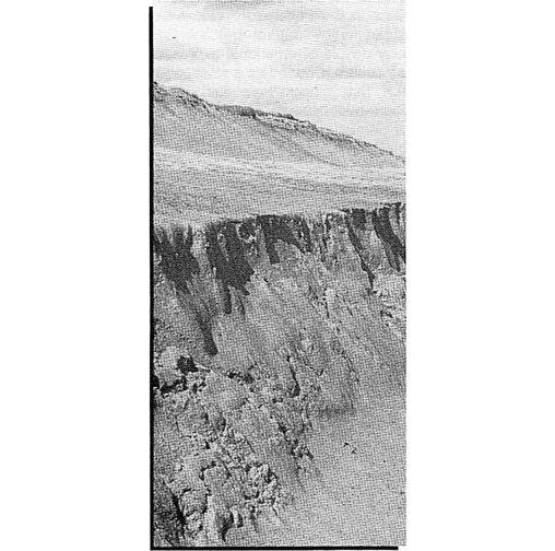 File:Wall surface.jpg