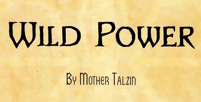 File:Wild Power flyleaf.png