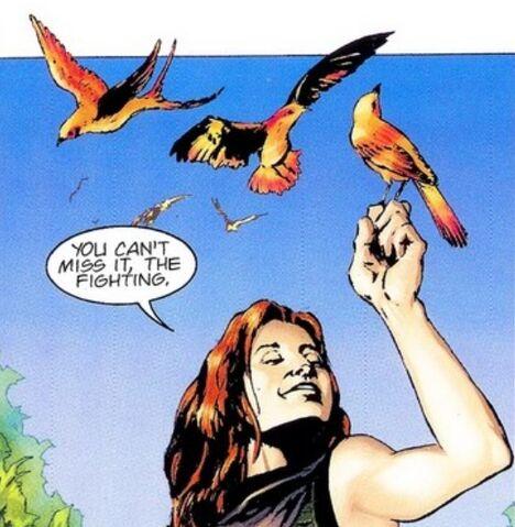 File:Rdava-birds.jpg