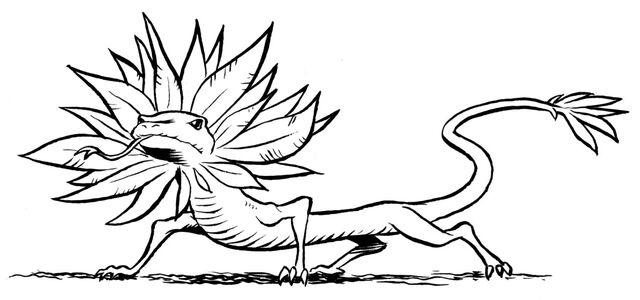 File:Feathered lizard.jpg