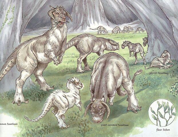 File:Tauntaun Species.jpg