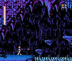 File:SW NES91.png
