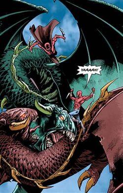 Menagerie Dragons