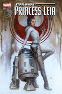 Star Wars Princess Leia Vol 1 1 Comicon Variant