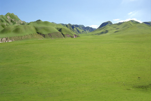 File:Great Grass Plains.jpg