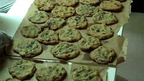 We Made a Lot of Cookies (Day 842 - 3 15 12)