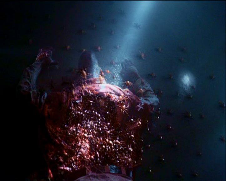 Image - Gray Widowletts.png | Stephen King's The Mist Wiki | Fandom powered by Wikia