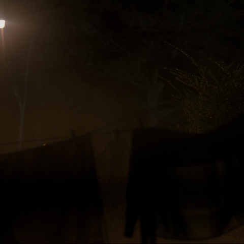 The faint silhouette of the Monster appearing behind a clothesline.