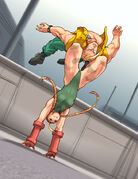 Cammy vs. Charlie