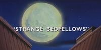 Street Fighter - Episodio 013