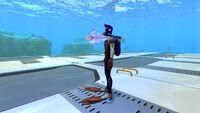 BladderfishSizeref