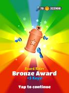 AwardBronze-BoardRider