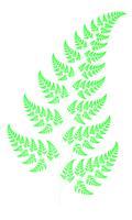 File:Fractal Fern Wiki 120px-Bransleys fern.png