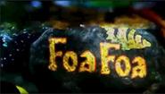 FoaFoaIntroShot
