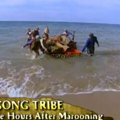 Pagong arrives to their beach.
