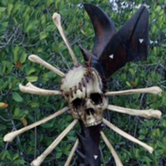 <i>Survivor: Fiji</i> Immunity Idol, a skull-smash weapon.