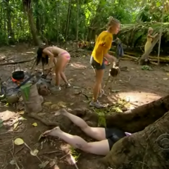 Shambo searches for the Hidden Immunity Idol